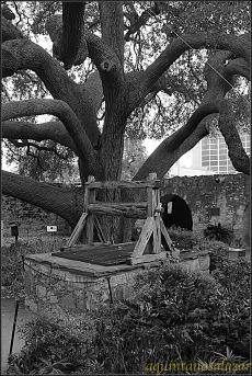 El Alamo. San Antonio