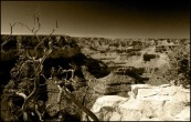 Grand Canyon. Arizona